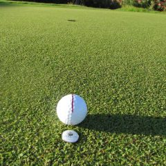 Seven Top Golf Tips to Curing Your Golf Slice